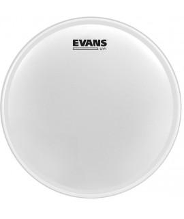 Evans B16UV1 UV1 CTD Dobbőr