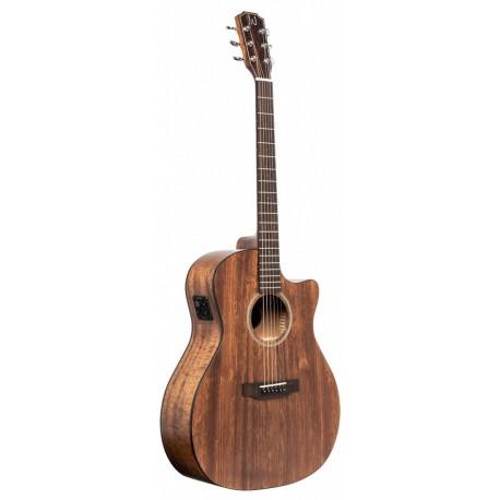 James Neligan DOV-ACFI Elektroakusztikus gitár