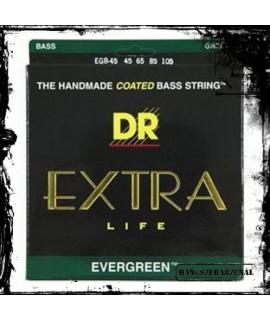 DR EGB-45 Basszus húr