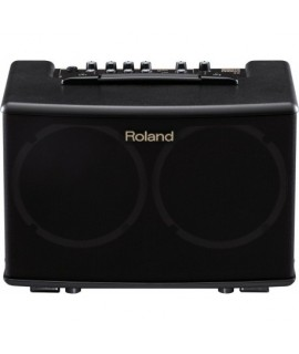 Roland AC-40  Gitár kombó